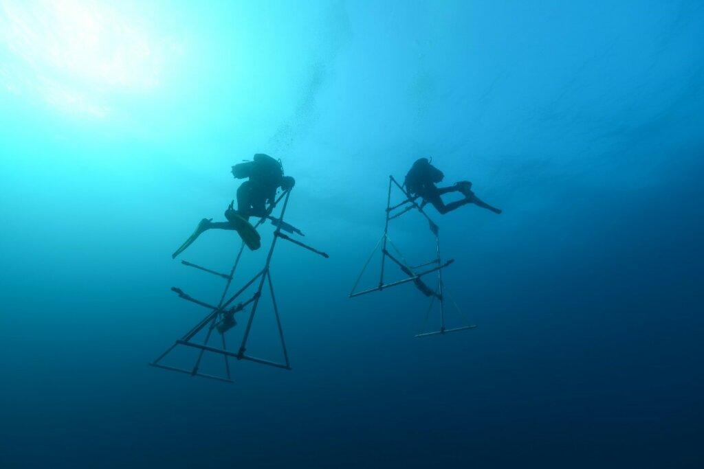 Acoustique des fonds marins